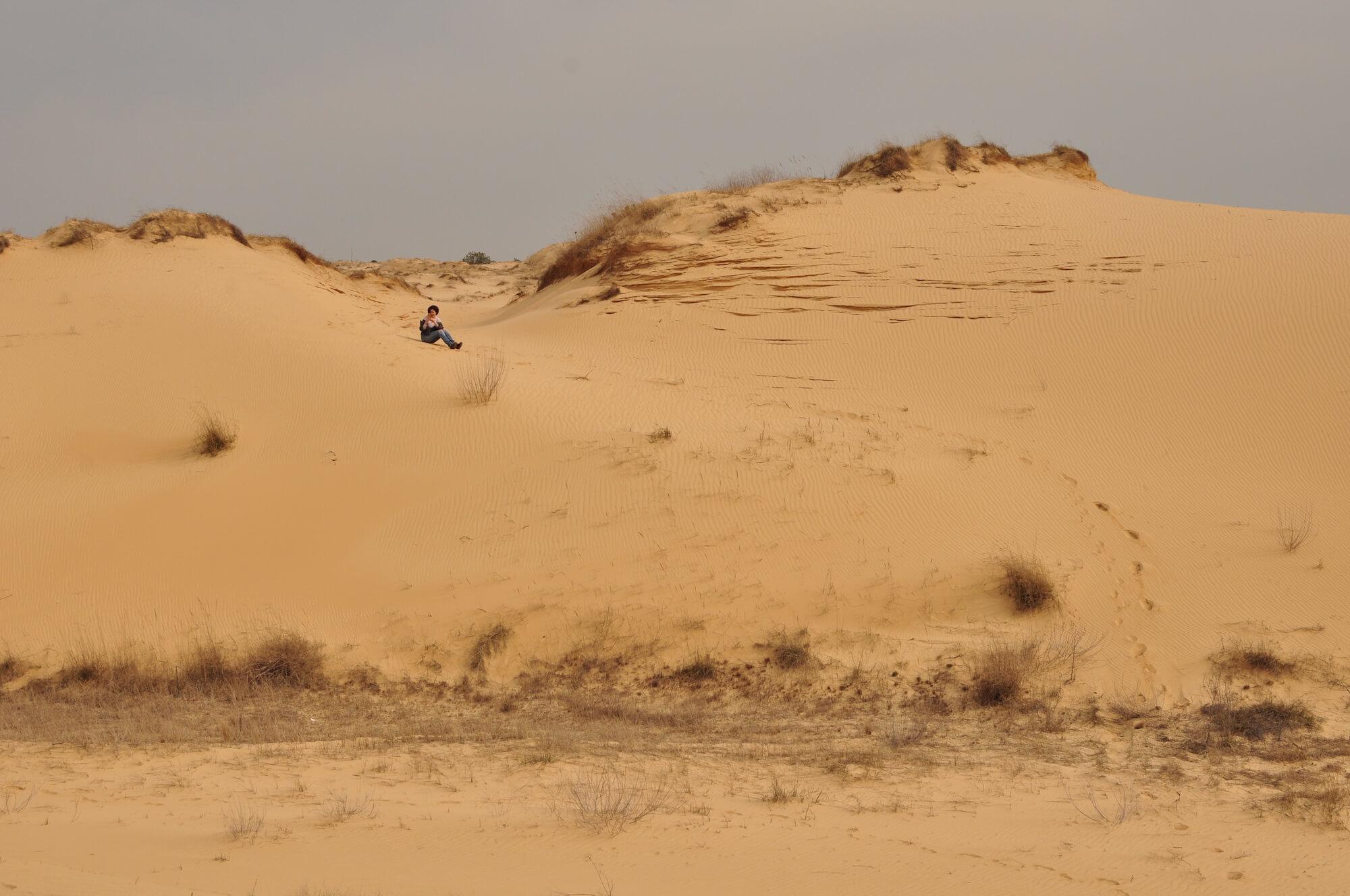 Алешковские пески, Алёшковские пески, Олешковские пески, Нижнеднепровские пески