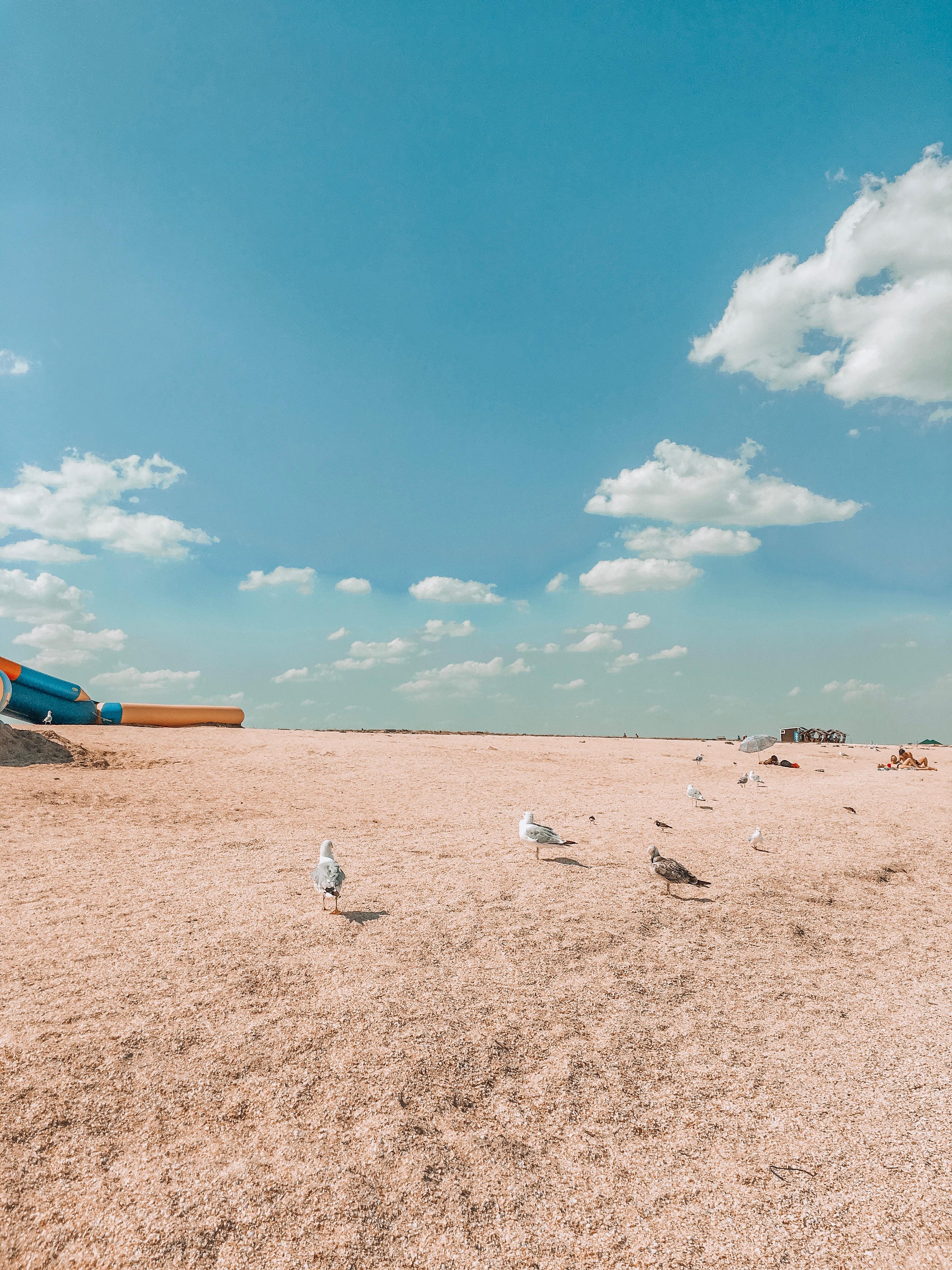 Пляжи Арабатской стрелки