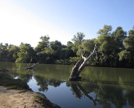 Нижнеднестровский природный парк