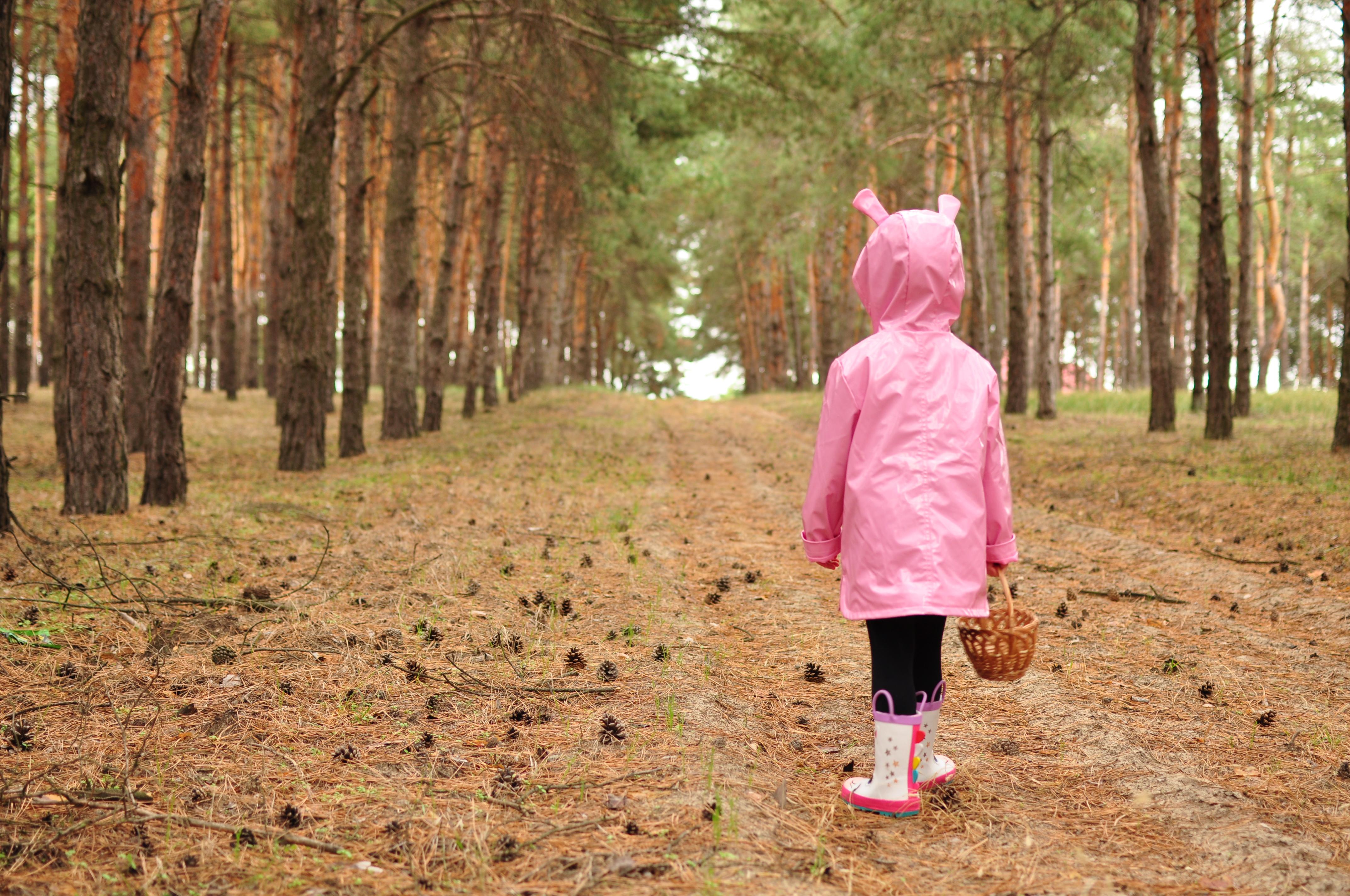 Савранский лес: удивительный уголок Одесской области