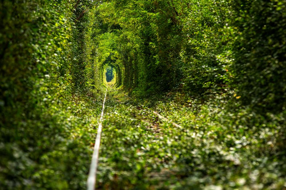 Рівненська область: куди поїхати та де відпочити на вихідних