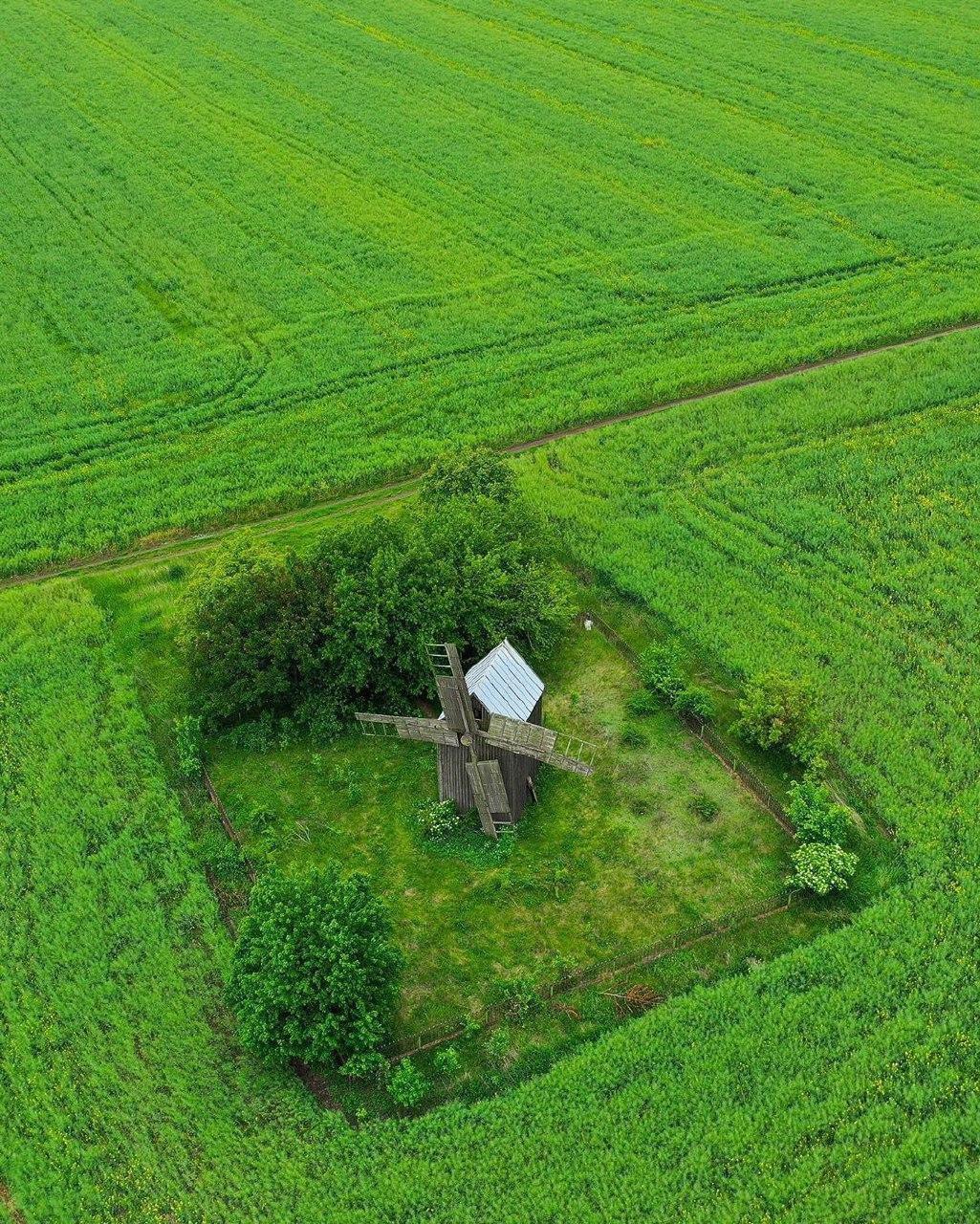 Деревянная мельница в селе Будеи
