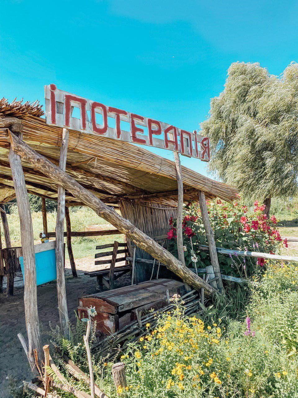 ипотерапия в зеленых хуторах таврии.